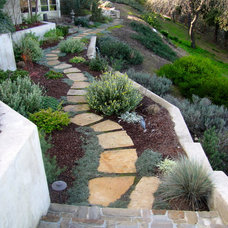 Traditional Landscape by Judy's Gardens & Design