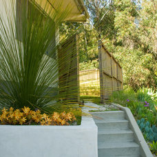 Contemporary Landscape by June Scott Design