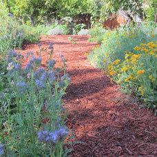 Contemporary Landscape by The Woven Garden