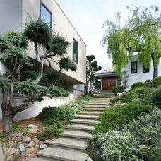 Modern Landscape by Amber Flooring