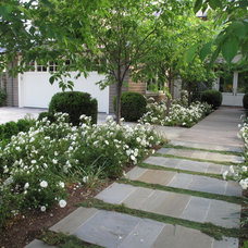 Transitional Landscape by New Canaan Landscaping Inc.