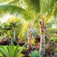 Tropical Landscape by Designscape Inc.