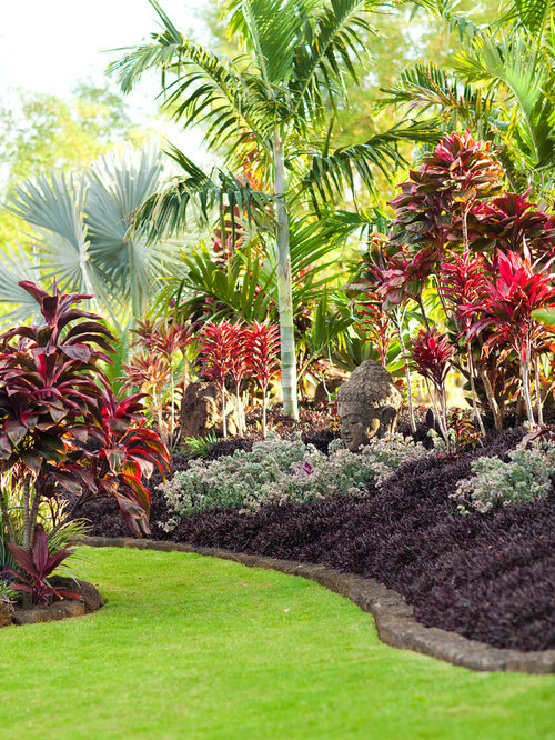 10K Tropical Landscape Design Ideas Remodel Pictures Houzz