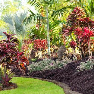 Diseño de jardín exótico en patio trasero