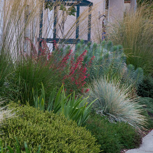 This is an example of a mid-sized contemporary drought-tolerant and full sun front yard stone landscaping in Vancouver for summer.