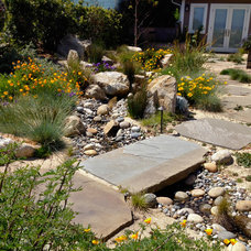 Contemporary Landscape by Woolly Blue Landscaping