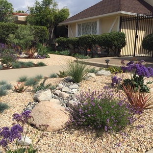 Design ideas for a large retro front xeriscape full sun garden for spring in Los Angeles with gravel.
