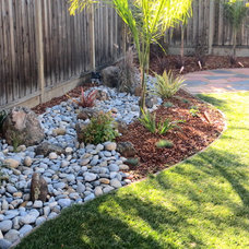 Transitional Landscape by Jpm Landscape