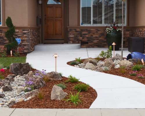 Low Water Garden Home Design Ideas Pictures Remodel and