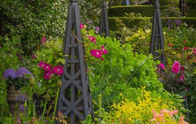 9 Ways to Create Height in Your Garden
