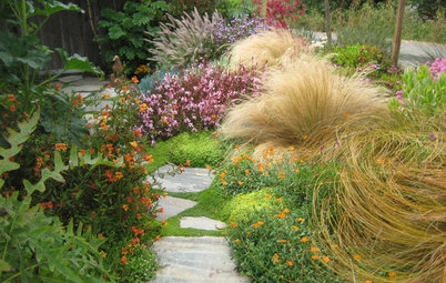 Please Touch and More: 5 Elements of a Sensory Garden