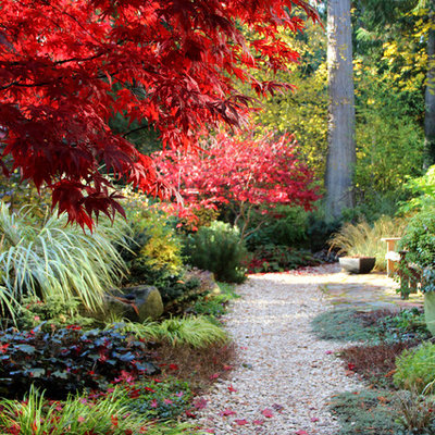 Design ideas for a contemporary backyard gravel landscaping in Seattle for fall.