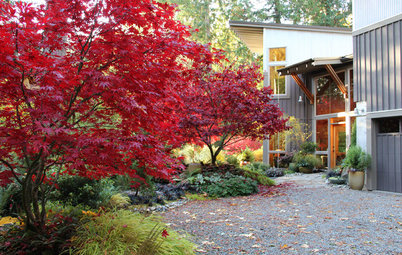 Houzz Call: Show Us Your Fall Color!