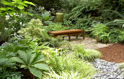 Exotic Plants for Frosty Gardens