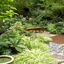 Landscaping Ideas Shady Areas Design Ideas, Pictures, Remodel, and ...