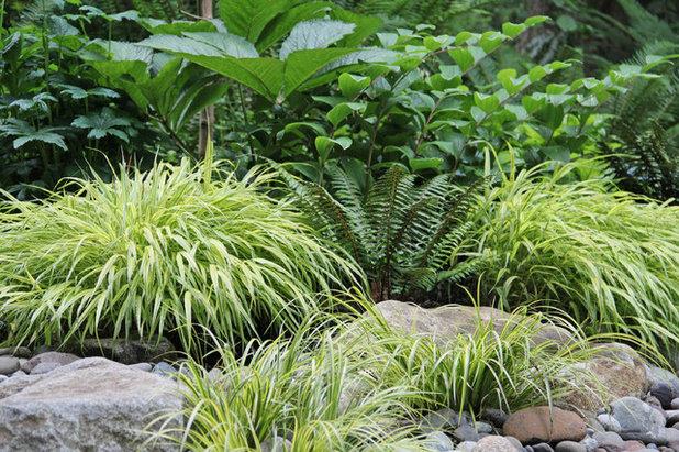 コンテンポラリー 庭 by Bliss Garden Design, LLC
