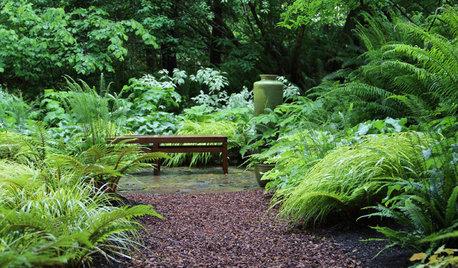 庭から考えるサステナビリティ