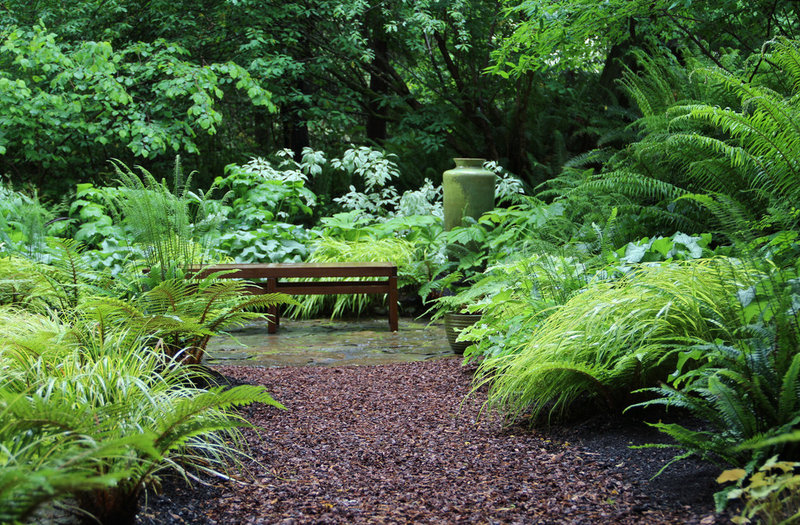 10 Solutions For Soggy Soil in your Gainesville Landscape ... on Landscaping Ideas For Wet Backyard id=16822
