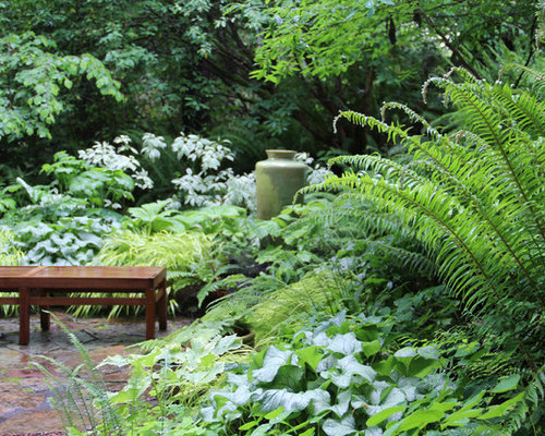 Garden Design North Facing north facing garden design ideas, renovations & photos