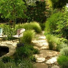 Eclectic Landscape by landscape design-zivgarden