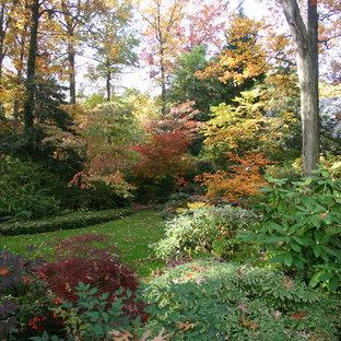 Magical Woodland Garden