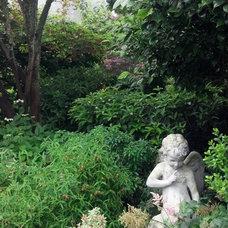 Traditional Exterior by Classic Nursery & Landscape Co. / Alan Burke, asla