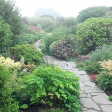 Traditional Landscape by Classic Nursery & Landscape Co. / Alan Burke, asla