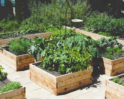 Jardin potager avec des pav s en b ton photos et id es for Jardin potager 78