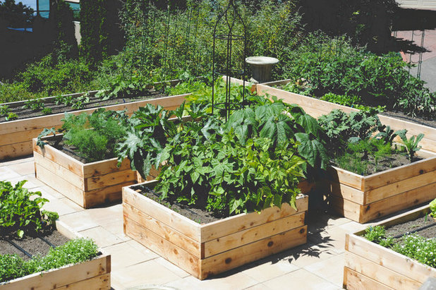 American Traditional Garden by Seattle Urban Farm Company
