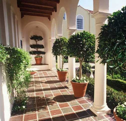 Traditional Landscape by Magrane Associates San Francisco