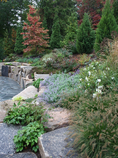 Rustic landscape ideas designs remodels photos for Rustic landscaping
