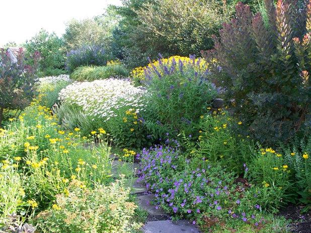 Conseils de pro pour concevoir un jardin l 39 anglaise - Jardins a l anglaise ...