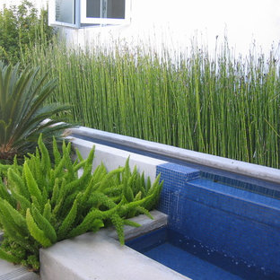 This is an example of a modern landscaping in Los Angeles.