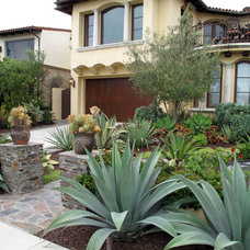 Mediterranean Landscape by Foundation Landscape Design