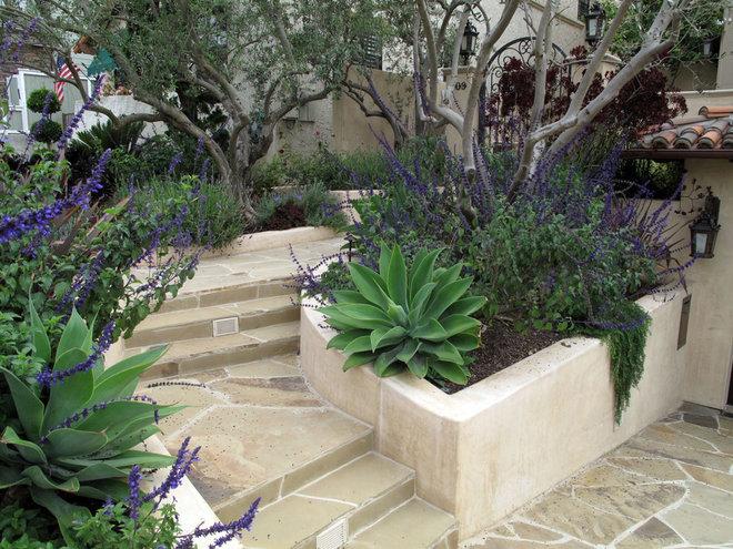 Mediterranean Landscape by Foundation Landscape Design