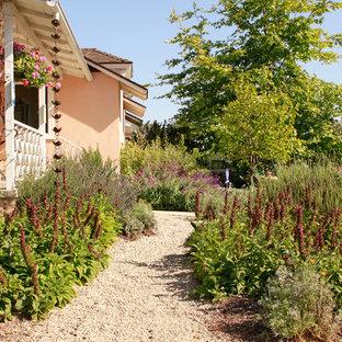 Idéer för en stor rustik trädgård i full sol framför huset på våren, med en trädgårdsgång och grus