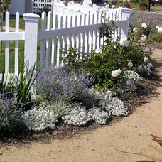 Traditional Landscape by JRD Landscape Architecture and Planning