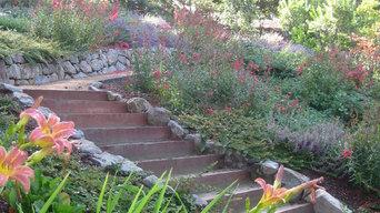 Marcy and Paul's Hillside Garden