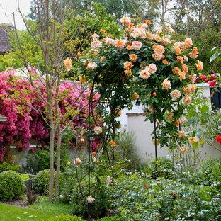 Foto di un giardino mediterraneo dietro casa in estate