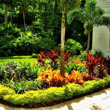 Modern Landscape by Miami Outdoor Solutions