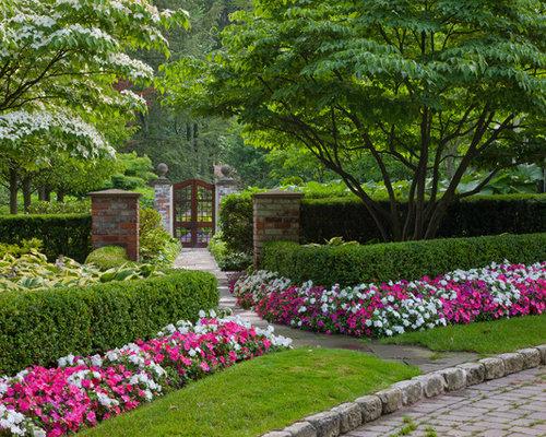 Simple backyard gardens - Impatiens Flower Houzz