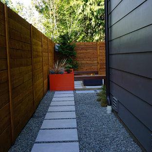 Immagine di un giardino xeriscape moderno in ombra di medie dimensioni e dietro casa