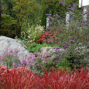 Mary-Liz Campbell Landscape Design