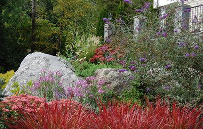10 Ideas for an Exuberantly Abundant Landscape