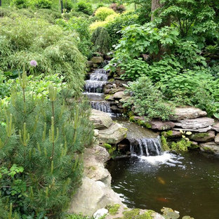 Cette photo montre un jardin montagne avec une exposition partiellement ombragée et une cascade.