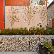 Modern Landscape by BUILD LLC