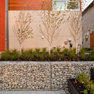Inspiration for a contemporary courtyard landscaping in Seattle.