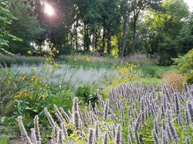 Landscape by Donald Pell - Gardens