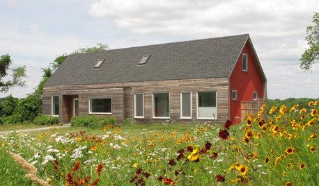 How to Design a Meadow Garden Everyone Will Love