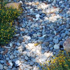 Mediterranean Landscape by Habitat Design